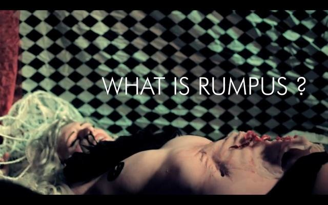 What Is Rumpus?